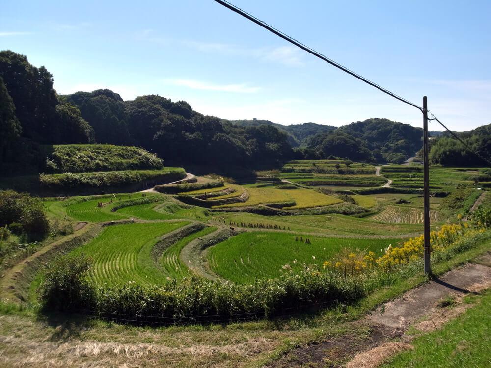 ノマド村田園風景