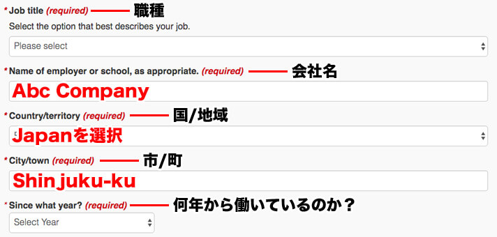 Job title、Name of employer or school, as appropriate.、Country/territory、City/town、Since what year? を入力