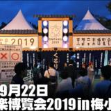 【ライブレポ】京都音楽博覧会で「ナンバーガール」と「くるり」を見た|セットリストや感想など