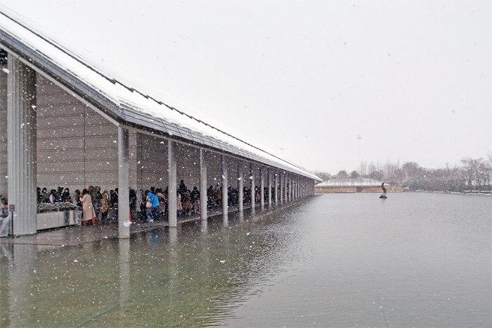 デザインあ展 in 滋賀(佐川美術館)|雪の中、寒さに震えながら順番を待つ人々