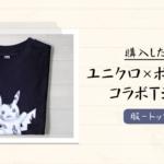 【ユニクロ-UT】ダニエル・アーシャムとポケモンのコラボTシャツを購入
