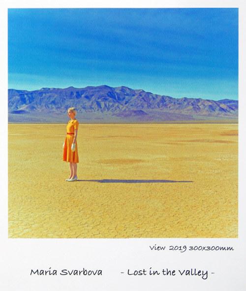 マーリア・シュヴァルボヴァー Lost in the Valley in 芦屋画廊 kyoto|写真展の様子3